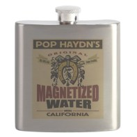 magnetized_water_flask
